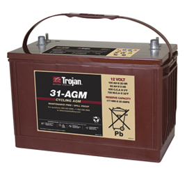 Trojan AGM Cycling Battery 12V 100Ah Group Size 31